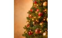 [Vánoční stromek s kompletní vánoční výzdobou]
