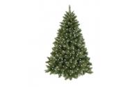 [Vánoční stromek s LED světýlky]