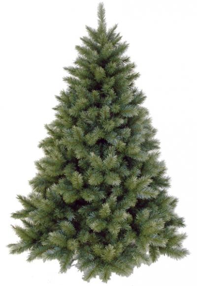 Vánoční stromek OREGON CEDAR