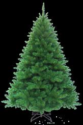 [Vánoční stromek OREGON PINE]