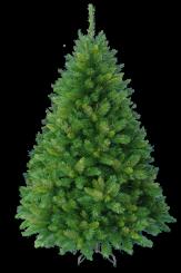 [Vánoční stromek COLUMBUS]