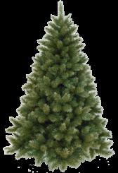[Vánoční stromek OREGON CEDAR ]